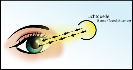Schematische Darstellung von der Aufnahme von Licht über das Auge