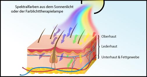 Schematische Darstellung von der Wirkung der Farbtherapie über die Haut